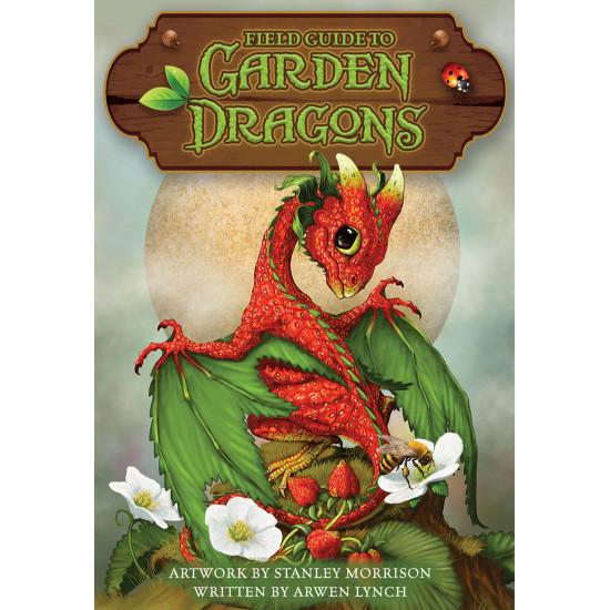 Oráculo Jardim dos Dragões...